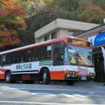 CIMG9852.JPG