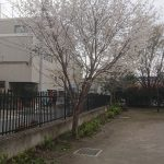 DSC_0115-1.JPG